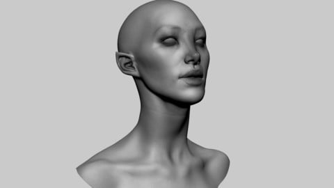 Female Head 05