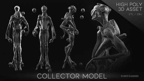 "the ""Collector"" model"