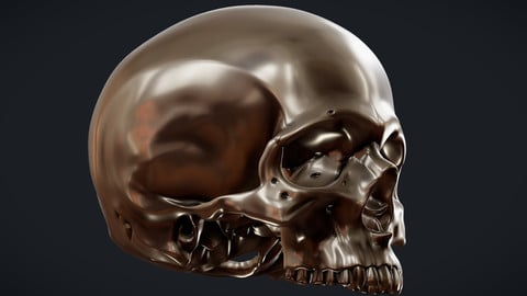 Perfect Shaped Skull Basemesh WIP