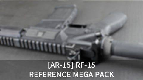[150+] AR-15 Rifle References Pack