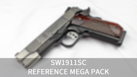 [140+] Smith & Wesson SW1911SC Reference Pack