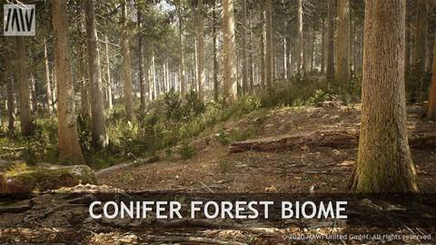 UE4 - CONIFER FOREST BIOME
