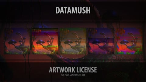 Datamush - Artwork License