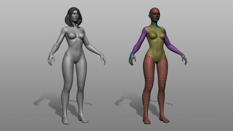 Stylized Female Basemesh