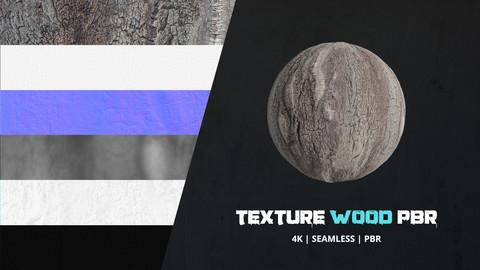 Texture Bark 4k PBR - 16bit - 03