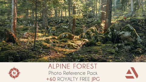 Photo Reference Pack: Alpine Forest