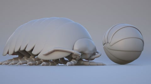Roly Poly - Isopod Basemesh