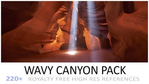 WAVY CANYON PACK