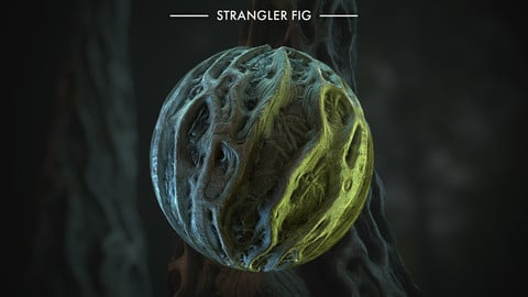 Substance Strangler Fig