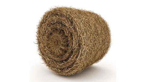 Straw Round Model