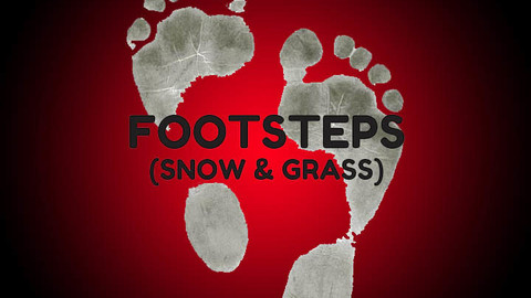 Footstep Audio (Grass & Snow)