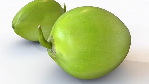 Coconut green 3D Model