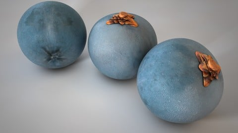 Juniper berry 3D Model