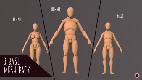 Anatomy BASEMESHES Pack