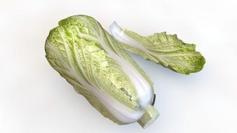Kimchi _ napa cabbage 3D Model