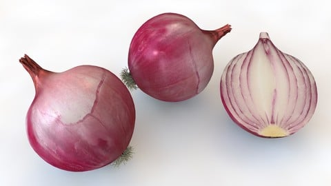 Onion Red 3D Model