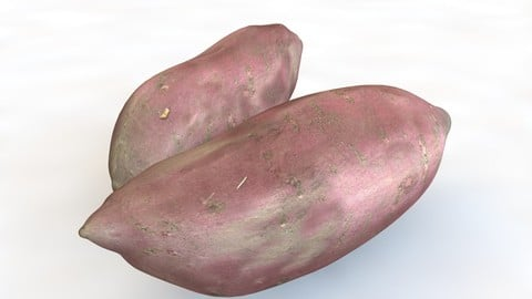 Sweet Potato Purple 3D Model