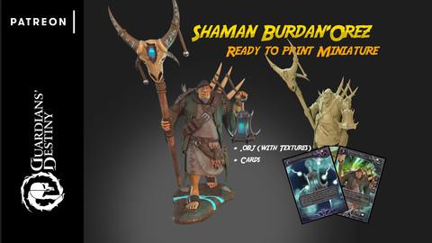 Ogre Shaman Burdan'Orez