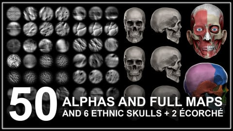 50 Full Alphas With Maps and 6 Skulls