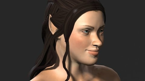 Naked Elf woman-Rigged 3d game character Low-poly 3D model