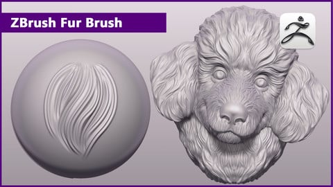 ZBrush Fur Brush