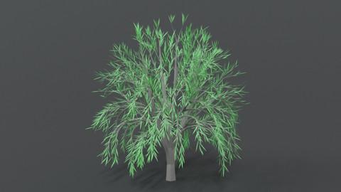 Low Poly Cartoon Tree