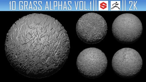 10 Grass Alphas Vol.1 (ZBRush, Substance, 2K)
