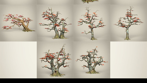 3D Game Ready Maple Tree Collection