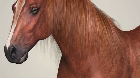 Photorealistic Brown Horse