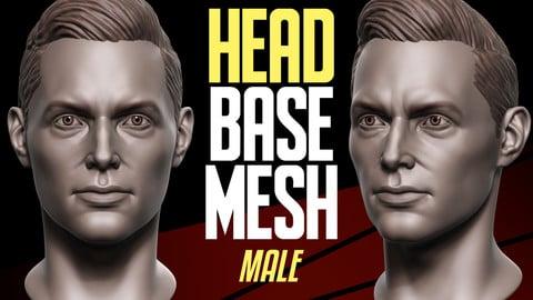 Head Basemesh Male