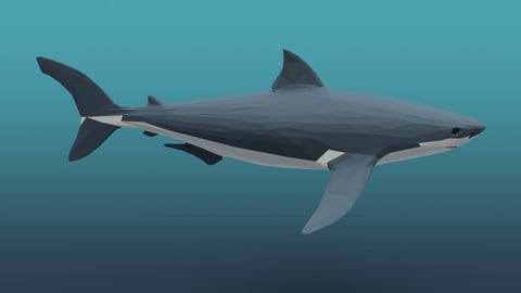 Low poly shark