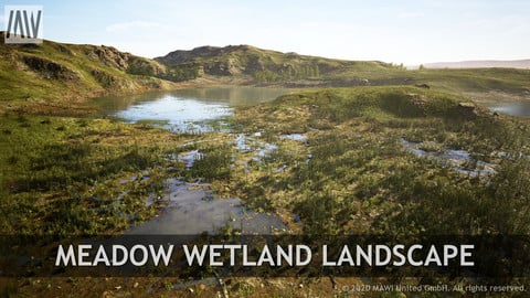 UE4 - MEADOW WETLANDS LANDSCAPE