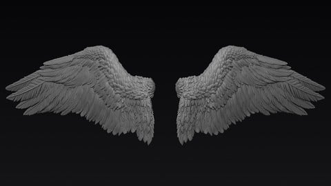 Wings Sculpt