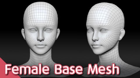 Female Head Base Mesh