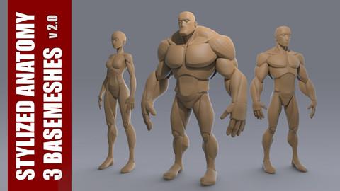 Stylized Anatomy BASEMESHES