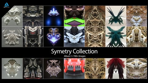 Symetry Collection: Album 1