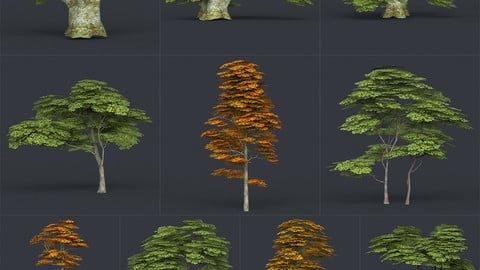 Low Poly 10 Tree Collection Release 2