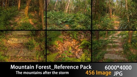 Mountain Forest_Reference Pack