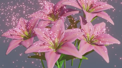 Lily flowers rigged animated