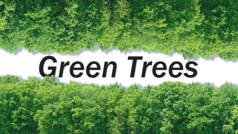 Green Trees + Gift