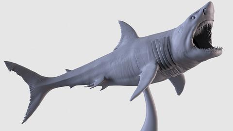 White Shark Statue