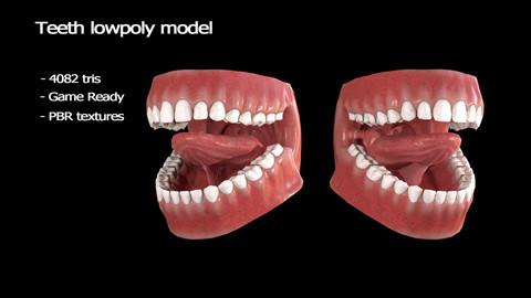 Teeth lowpoly model