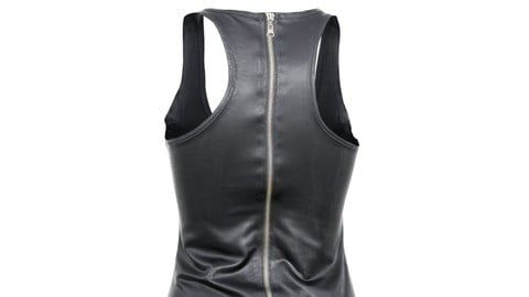 Vintage Dress Leather Zipper
