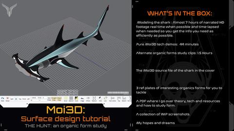 Moi3D : an organic form study