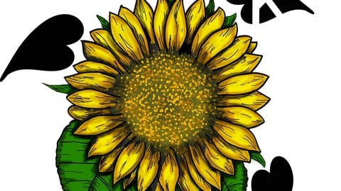 SunFlower of Knowledge