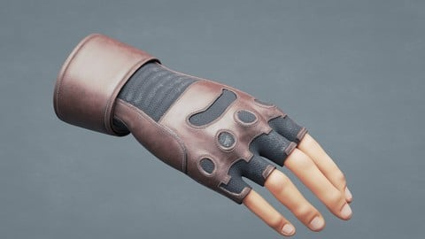Gloves 3D model- Motorcycle Type