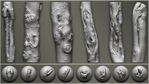 Zbrush - Trunk Detail Brushes vol. 3