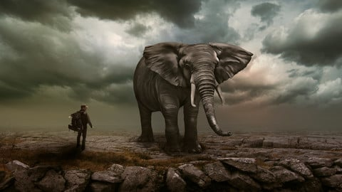 Manipulation Photo (elephant and child at the edge of the cliff)