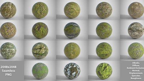 18 Seamless Mossy Surfaces PBR Volume 3