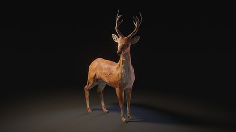 Sculpture Style Deer